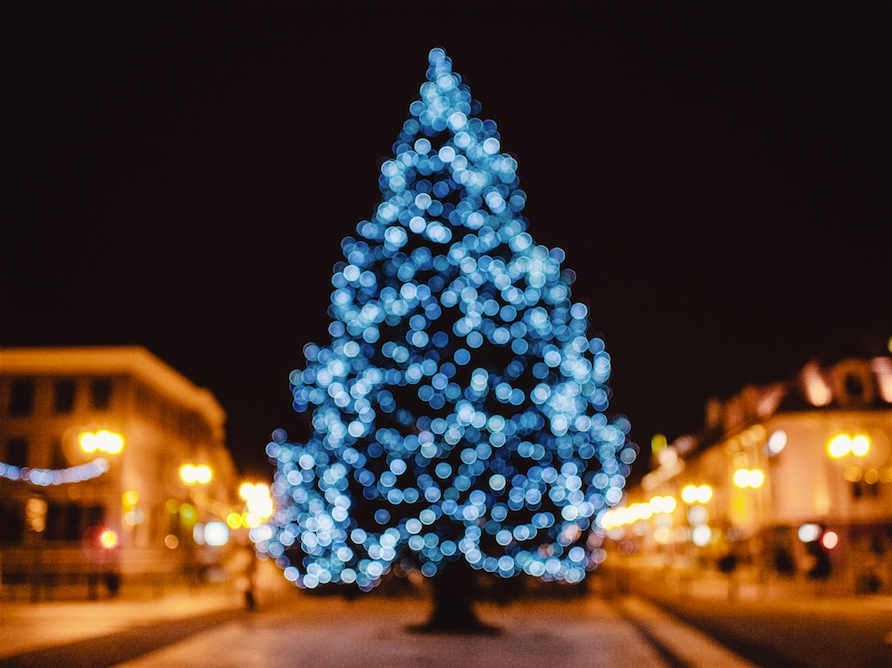 wann wird der christbaum aufgestellt hier gibt 39 s die antwort. Black Bedroom Furniture Sets. Home Design Ideas